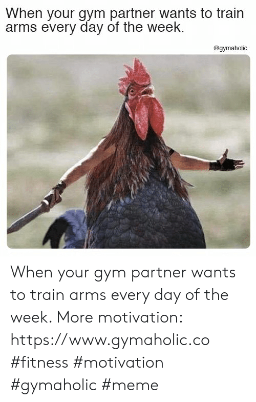 Gym, Meme, and Train: When your gym partner wants to train  arms every day of the week.  @gymaholic When your gym partner wants to train arms every day of the week.  More motivation: https://www.gymaholic.co  #fitness #motivation #gymaholic #meme