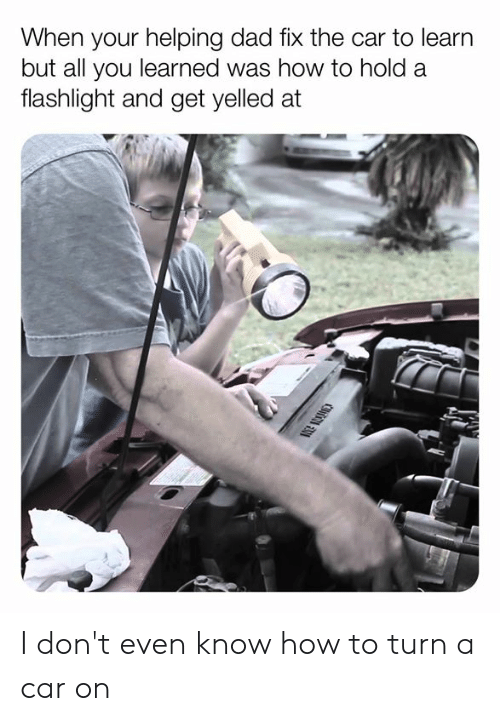 Dad, Dank, and Flashlight: When your helping dad fix the car to learn  but all you learned was how to hold a  flashlight and get yelled at I don't even know how to turn a car on