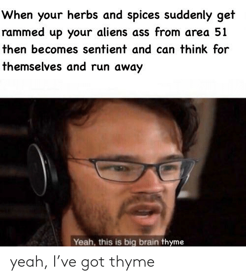Ass, Reddit, and Run: When your herbs and spices suddenly get  rammed up your aliens ass from area 51  then becomes sentient and can think for  themselves and run away  Yeah, this is big brain thyme yeah, I've got thyme