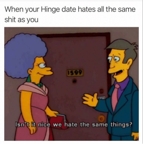 Funny, Shit, and Date: When your Hinge date hates all the same  shit as you  1599  Isn''t it nice we hate the same things?