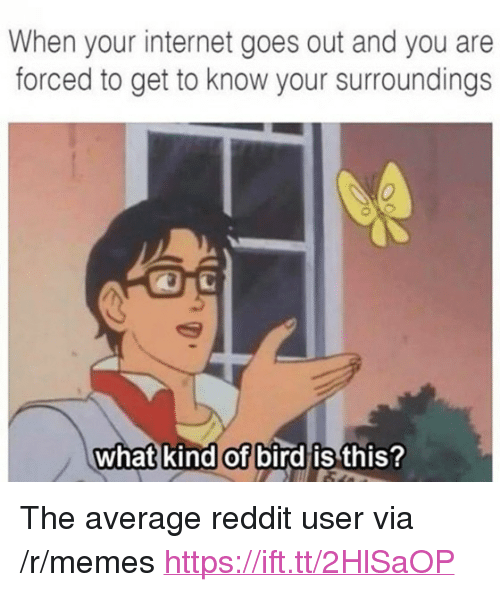 "Internet, Memes, and Reddit: When your internet goes out and you are  forced to get to know your surroundings  0  what kind of bird is  this? <p>The average reddit user via /r/memes <a href=""https://ift.tt/2HlSaOP"">https://ift.tt/2HlSaOP</a></p>"