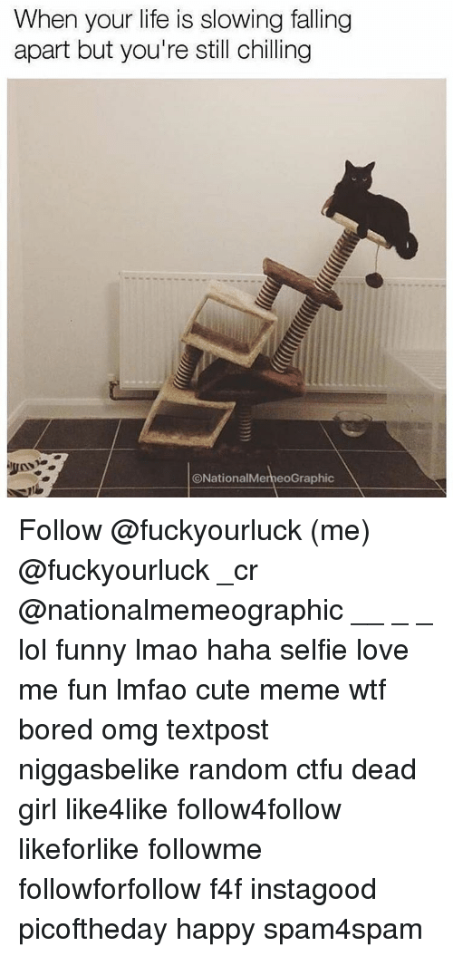 Bored, Ctfu, and Memes: When your life is slowing falling  apart but you're still chilling  ONational Meme oGraphic Follow @fuckyourluck (me) @fuckyourluck _cr @nationalmemeographic __ _ _ lol funny lmao haha selfie love me fun lmfao cute meme wtf bored omg textpost niggasbelike random ctfu dead girl like4like follow4follow likeforlike followme followforfollow f4f instagood picoftheday happy spam4spam