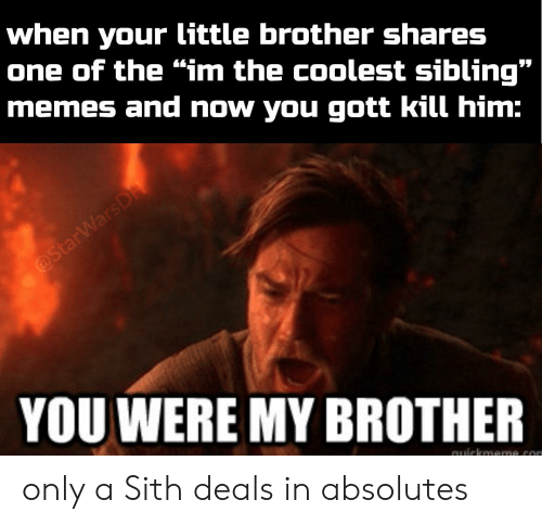 "Sibling Memes: when your little brother shares  one of the ""im the coolest sibling""  memes and now you gott kill him:  @StarWarsDA  YOU WERE MY BROTHER only a Sith deals in absolutes"
