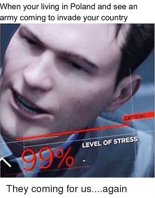 Army, Dank Memes, and Poland: When your living in Poland and see an  army coming to invade your country  CRITICAL  LEVEL OF STRESS  99%