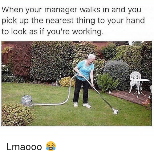 Memes, 🤖, and Working: When your manager walks in and you  pick up the nearest thing to your hand  to look as if you're working Lmaooo 😂