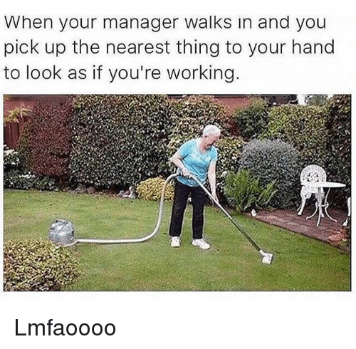 Funny, Working, and Thing: When your manager walks in and you  pick up the nearest thing to your hand  to look as if you're working Lmfaoooo