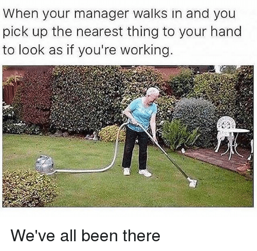Memes, Been, and 🤖: When your manager walks in and you  pick up the nearest thing to your hand  to look as if you're working We've all been there