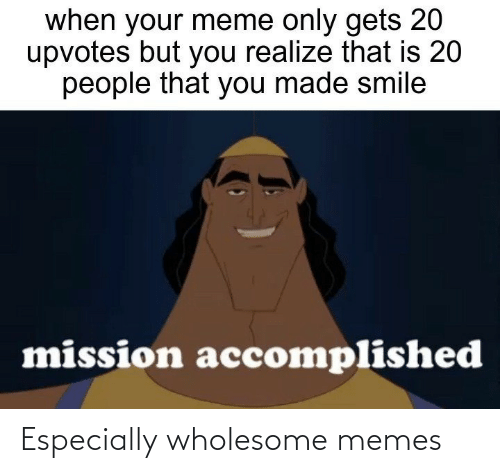 You Realize: when your meme only gets 20  upvotes but you realize that is 20  people that you made smile  mission accomplished Especially wholesome memes