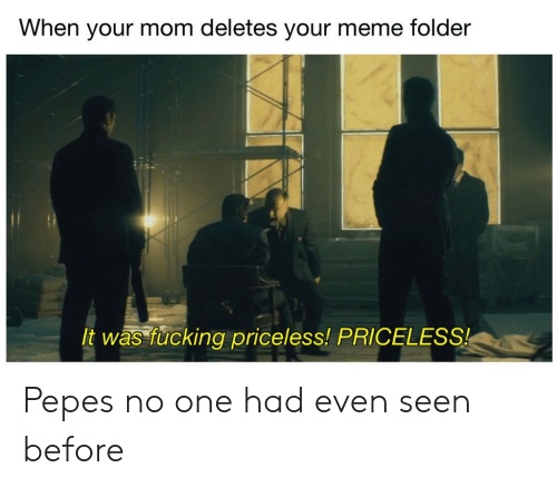 Meme Folder: When your mom deletes your meme folder  t was fucking priceless! PRICELES Pepes no one had even seen before