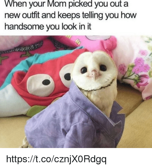 Memes, Mom, and 🤖: When  your  Mom  picked  you a  out  new outfit and keeps telling you how  handsome you look in it https://t.co/cznjX0Rdgq
