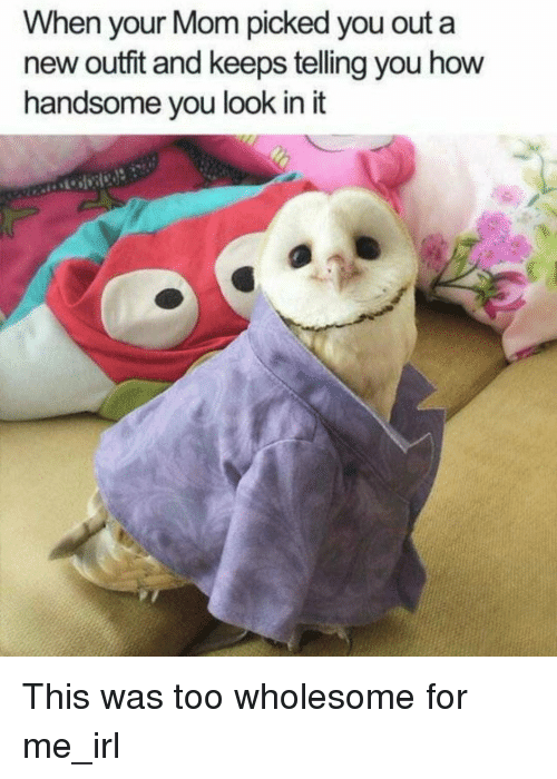 new outfit: When your Mom picked you out a  new outfit and keeps telling you how  handsome vou look in it <p>This was too wholesome for me_irl</p>