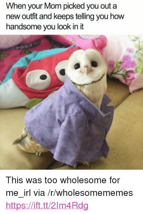 """new outfit: When your Mom picked you out a  new outfit and keeps telling you how  handsome vou look in it <p>This was too wholesome for me_irl via /r/wholesomememes <a href=""""https://ift.tt/2Im4Rdg"""">https://ift.tt/2Im4Rdg</a></p>"""