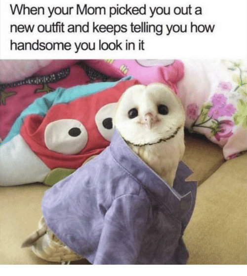 new outfit: When your Mom picked you out a  new outfit and keeps teling you how  handsome you look in it