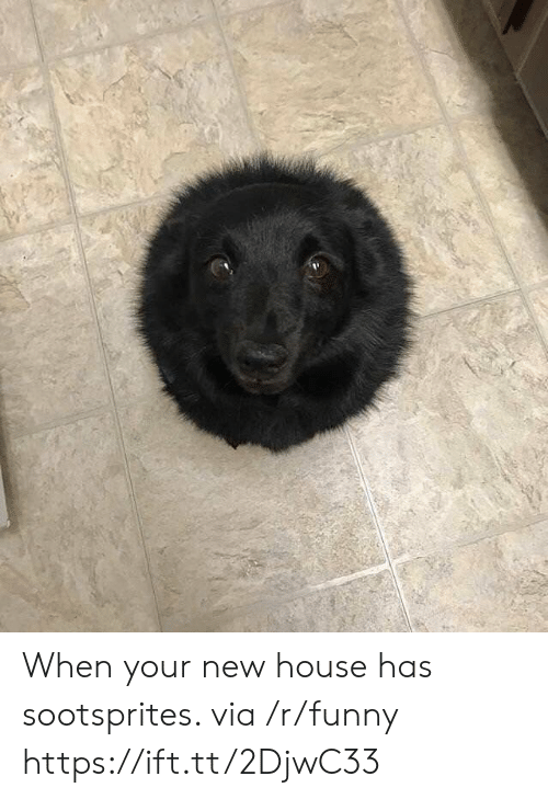 Funny, House, and Via: When your new house has sootsprites. via /r/funny https://ift.tt/2DjwC33