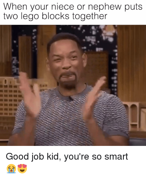 Dank, Lego, and Good: When your niece or nephew puts  two lego blocks together Good job kid, you're so smart 😭😍