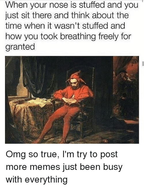 Memes, Omg, and True: When your nose is stuffed and you  just sit there and think about the  time when it wasn't stuffed and  how you took breathing freely for  granted Omg so true, I'm try to post more memes just been busy with everything