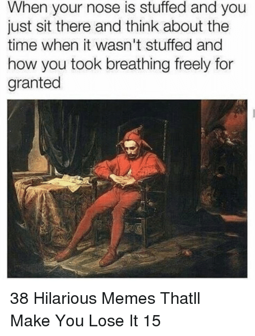 Memes, Time, and Hilarious: When your nose is stuffed and you  just sit there and think about the  time when it wasn't stuffed and  how you took breathing freely for  granted 38 Hilarious Memes Thatll Make You Lose It 15