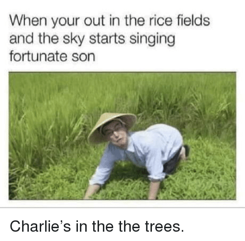 Charlie, Singing, and Trees: When your out in the rice fields  and the sky starts singing  fortunate son Charlie's in the the trees.