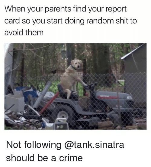 Criming: When your parents find your report  card so you start doing random shit to  avoid them Not following @tank.sinatra should be a crime