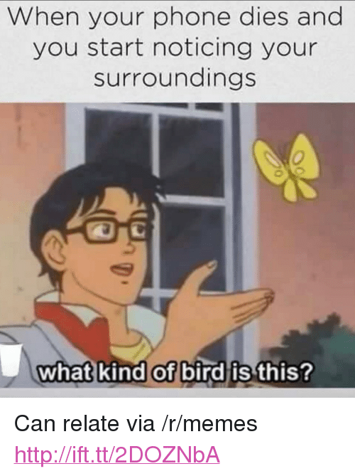 "Memes, Phone, and Http: When your phone dies and  you start noticing your  surroundings  what kind of bird is this <p>Can relate via /r/memes <a href=""http://ift.tt/2DOZNbA"">http://ift.tt/2DOZNbA</a></p>"