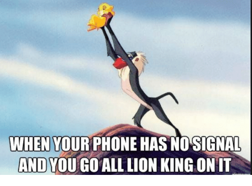 Phone, Lion, and Lion King: WHEN YOUR PHONE HAS NOSIGNAL  AND YOU GO ALL LION KING ONIT