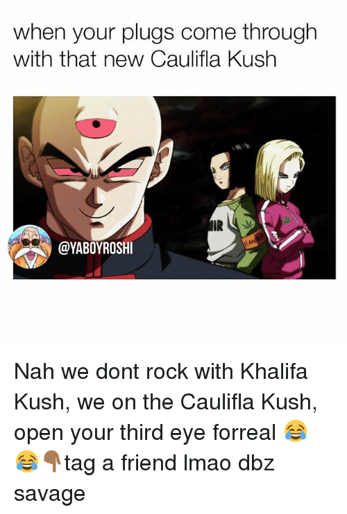 Lmao, Memes, and Savage: when your plugs come through  with that new Caulifla Kush  IR  @YABOYROSHI Nah we dont rock with Khalifa Kush, we on the Caulifla Kush, open your third eye forreal 😂😂👇🏾tag a friend lmao dbz savage