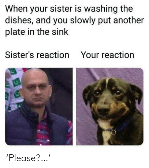 Another, Sisters, and You: When your sister is washing the  dishes, and you slowly put another  plate in the sink  Sister's reaction  Your reaction 'Please?…'