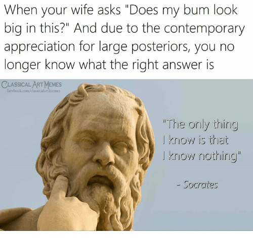 "Facebook, Memes, and facebook.com: When your wife asks ""Does my bum look  big in this?"" And due to the contemporary  appreciation for large posteriors, you no  longer know what the right answer is  CLASSICAL ART MEMES  facebook.com/classicalartimemes  ""The onily thing  I know is that  I know nothing""  - Socrates"