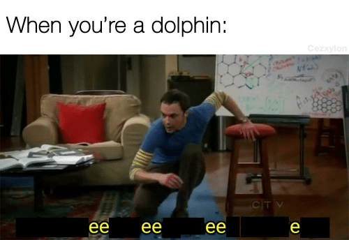 Dolphin: When you're a dolphin:  Cezxylon  CITV  ее  ее  ее  е