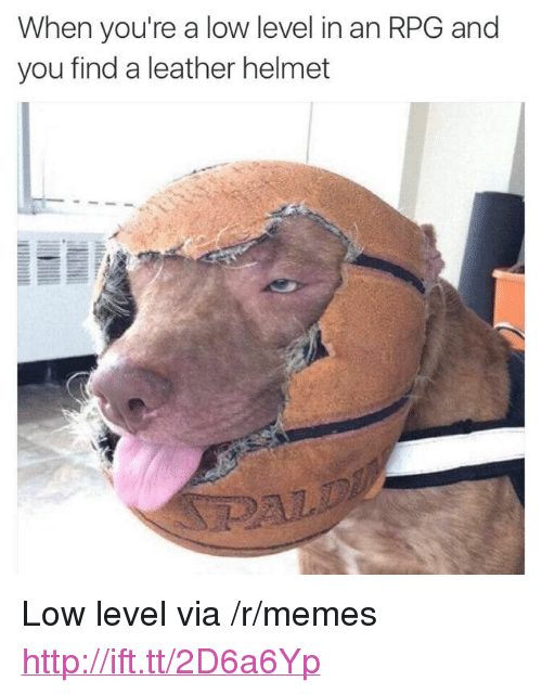 "Memes, Http, and Rpg: When you're a low level in an RPG and  you find a leather helmet <p>Low level via /r/memes <a href=""http://ift.tt/2D6a6Yp"">http://ift.tt/2D6a6Yp</a></p>"