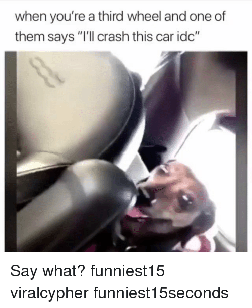 "Funny, Crash, and Car: when you're a third wheel and one of  them says ""I'll crash this car idc"" Say what? funniest15 viralcypher funniest15seconds"