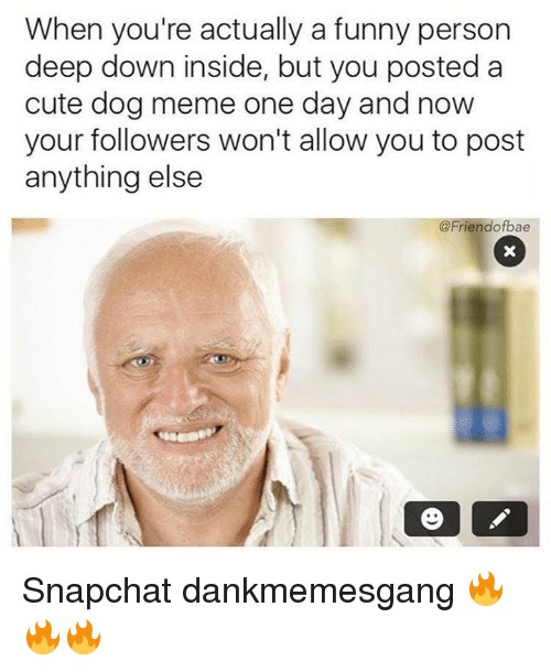 Dog Meme: When you're actually a funny person  deep down inside, but you posted a  cute dog meme one day and now  your followers won't allow you to post  anything else  @Friend ofbae Snapchat dankmemesgang 🔥🔥🔥