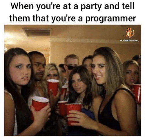 Party, Them, and Youre: When you're at a party and tell  them that you're a programmer  @_char.mander