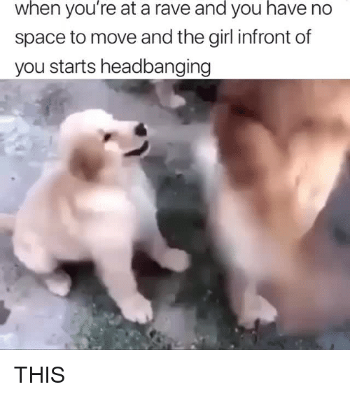 Memes, Girl, and Space: when  you're  at a rave you no  and  have  space to move and the girl infront of  you starts headbanging THIS