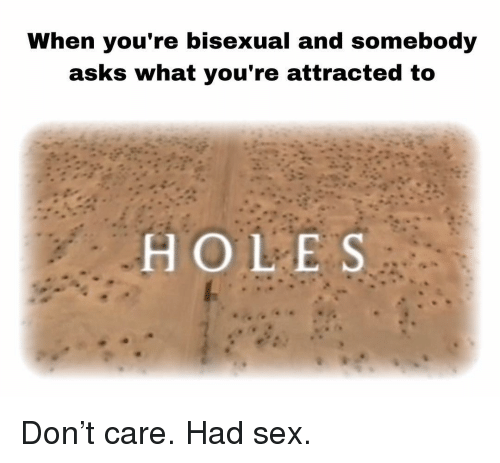 Memes, Sex, and Holes: When you're bisexual and somebody  asks what you're attracted to  HOLES Don't care. Had sex.