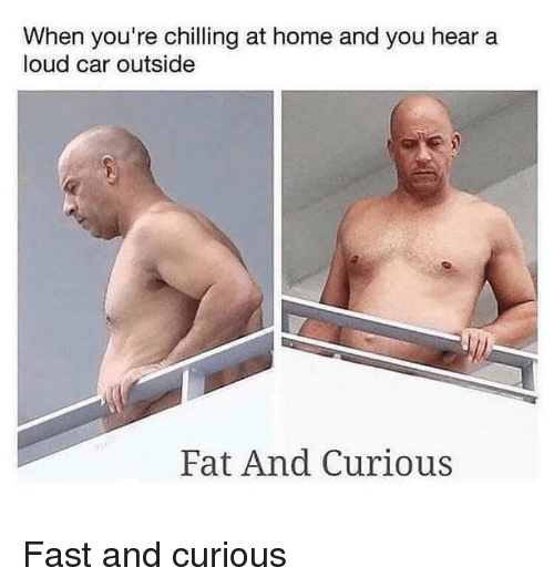 Memes, Home, and Fat: When you're chilling at home and you hear a  loud car outside  Fat And Curious Fast and curious