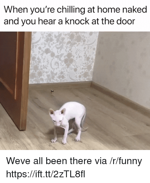 Funny, Home, and Naked: When you're chilling at home naked  and you hear a knock at the door Weve all been there via /r/funny https://ift.tt/2zTL8fl