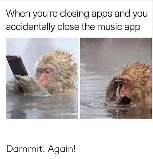 Music, Apps, and App: When you're closing apps and you  accidentally close the music app Dammit! Again!