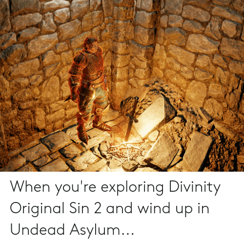 When You're Exploring Divinity Original Sin 2 and Wind Up in Undead