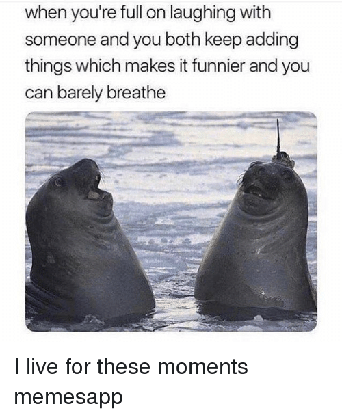 Memes, Live, and 🤖: when you're full on laughing with  someone and you both keep adding  things which makes it funnier and you  can barely breathe I live for these moments memesapp
