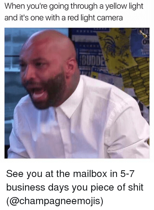 mailboxes: When you're going through ayellow light  and it's one with a red light camera  BIDDER See you at the mailbox in 5-7 business days you piece of shit (@champagneemojis)