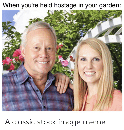 Meme, Reddit, and Image: When you're held hostage in your garden: A classic stock image meme