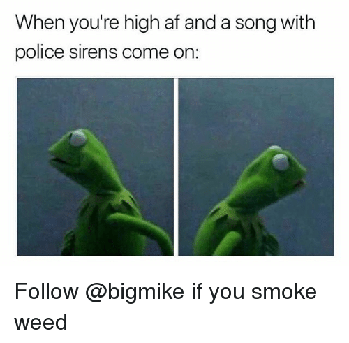 When Youre High Af: When you're high af and a song with  police sirens come on: Follow @bigmike if you smoke weed
