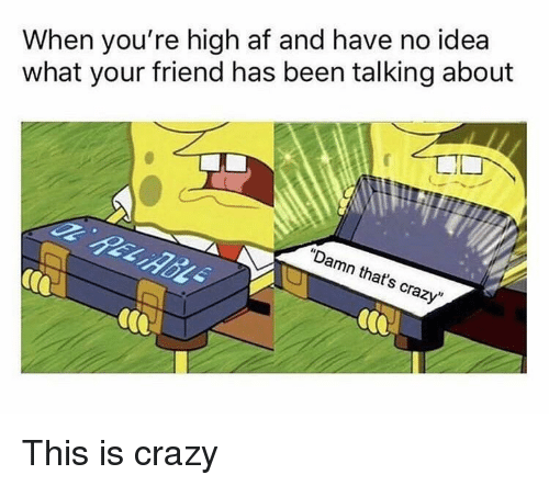 """When Youre High Af: When you're high af and have no idea  what your friend has been talking about  """"Damn that's crazy"""" This is crazy"""