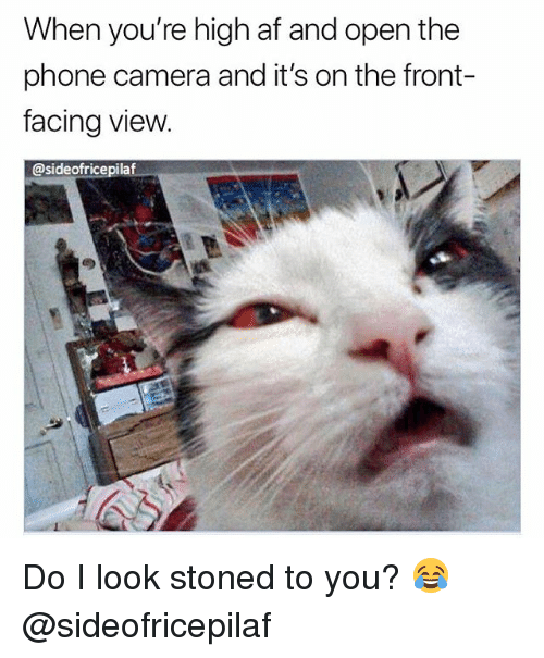 Af, Phone, and Weed: When you're high af and open the  phone camera and it's on the front-  facing vievw  @sideofricepilaf Do I look stoned to you? 😂 @sideofricepilaf