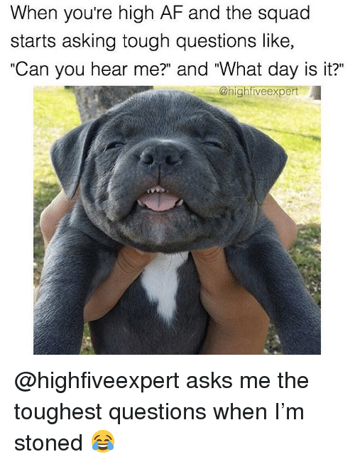 "Af, Squad, and Weed: When youre high AF and the squad  starts asking tough questions like,  ""Can you hear me?"" and ""What day is it?""  @highfiveexpert @highfiveexpert asks me the toughest questions when I'm stoned 😂"