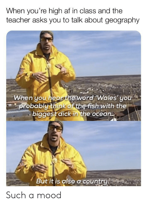 When Youre High Af: When you're high af in class and the  teacher asks you to talk about geography  When you hearheword Wales' you  probably think of the fish with the  biggest dick in the ocean.  But it is also a country Such a mood
