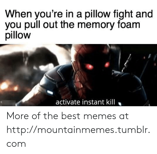 Pull Out: When you're in a pillow fight and  you pull out the memory foam  pillow  activate instant kill More of the best memes at http://mountainmemes.tumblr.com
