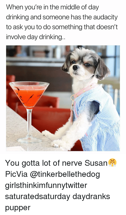 day drinking: When you're in the middle of day  drinking and someone has the audacity  to ask you to do something that doesn't  involve day drinking You gotta lot of nerve Susan😤 PicVia @tinkerbellethedog girlsthinkimfunnytwitter saturatedsaturday daydranks pupper