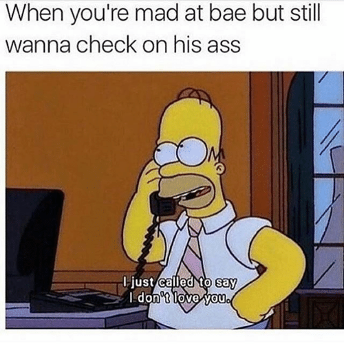 Ass, Bae, and Memes: When you're mad at bae but still  wanna check on his ass  I just called to say  don't loveWou